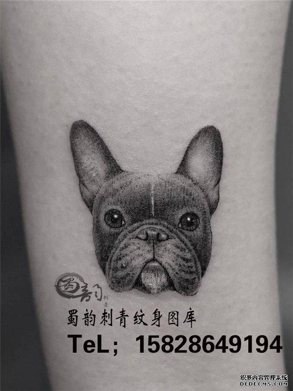 动物纹身 宠物纹身 手臂纹身 攀枝花纹身 蜀韵纹